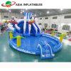 Giochi gonfiabili materiali della sosta dell'acqua del PVC, trasparenza di acqua gonfiabile del delfino con il raggruppamento