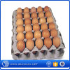 販売の卵の皿そして定温器のベストセラーの商品