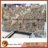 De ingevoerde Plakken van het Graniet voor Countertop/Ijdelheid Top/Worktop