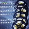 2835 bande du mètre DEL de 72 DEL avec la lumière de module de l'intense luminosité DEL SMD DEL