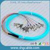 12 tresse optique de fibre de groupe du faisceau FC/Upc-50/125um Om3 millimètres
