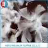 Penas de ganso e pato brancas / lavadas mais baratas para material de enchimento