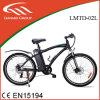 Велосипед портативной батареи рамки Tag/PAS электрический с Ce/En15194