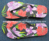 Тапочки Flop Flip пляжа (Ss14-8s054)