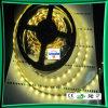 Tira de la tira LED Strip/3528 LED Strip/335 LED del LED