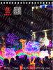 Indicatore luminoso di motivo del cammello del LED 2D 3*2m per la decorazione esterna di natale