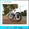 26 Inches Hub Motor Fat Draw Electric Snow Electric Bike