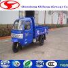 Diesel de carga cerrada tres ruedas motorizadas camión con cabina desde China