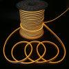 PVC 덮개 코드 LED 네온 밧줄 대중적인 판매 유연한 네온 지구