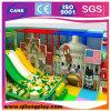 Équipement national d'amusement de thème pour la cour de jeu d'intérieur d'enfants (QL-GJ01)