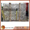 PavingまたはFloorのための自然なCrema Delicatus Granite Big Slab
