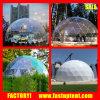 trasparenti pieni 20m di 10m 16m galvanizzano la tenda della tenda foranea della cupola geodetica