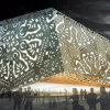 Disegnato a mano come i comitati di alluminio incisi per la decorazione esterna di &Interior