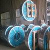Tira de aço galvanizada mergulhada quente da folha da bobina