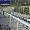 Suministro de la fábrica de yeso de precios de la planta baja haciendo