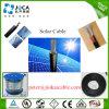 TUV homologué Standard PV Solar Cable 6mm pour panneau solaire