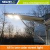 1개의 LED 램프에서 중국 옥외 정원 태양 에너지 전부