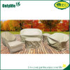 Onlylife BSCI Eco-Fiendly Cubierta de la silla del hogar