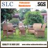 Mobilia esterna del giardino della poli del rattan mobilia del giardino (SC-B1013)