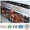 Клетка фермы цыпленка с автоматическим оборудованием птицефермы