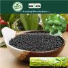 Il carbonio di Kingeta ha basato il fertilizzante composto NPK 18-18-6 per l'erba