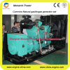 De open/Stille Generator van het Aardgas van het Type