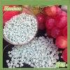 Sulfaat 21% van het Ammonium van de Meststof van de landbouw Stikstof