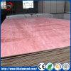 4*8 Raad van het Hout van de Fabriek van Linyi/van het Triplex van de Kern van de Populier van het Vernisje van Lumberr/van het Hout de Commerciële/Buitensporige