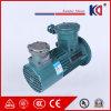 Motor de indução elétrico trifásico com movimentação variável da freqüência