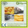 Getrocknete geschnittene Mangofrucht-Produktions-Pflanze