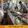 Chaîne de production en plastique réutilisée par WPC de PE et en bois