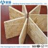 12 mm van Phenolic Eerste Klasse OSB van Fabriek Shandong