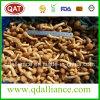 Nameko Shiitake-Austeren-Pilz-gefrorener Mischpilz