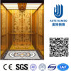 Лифт резиденции домашний с приводом AC Vvvf беззубчатым (RLS-229)