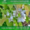 Выдержка травы Epimedium верхнего качества (Icariin 5% 10%, коэффициент: 4:1 ~20: 1)