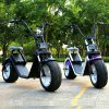 Più nuovo motorino Harley di 1200watt Citycoco elettrico con la certificazione del Ce