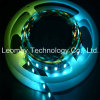 Luz mágica ideal da fita da luz de tiras do diodo emissor de luz da cor de SMD5050 IC2811