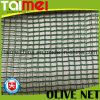 Rede verde-oliva quadrada da coleção para Tunisa/Greece