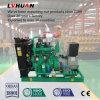 trucioli 30kw nella generazione del generatore della biomassa di elettricità