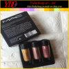 3 parti di 2.5g del pigmento di scintillio del kit della polvere per le estetiche del mackintosh