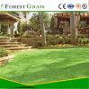 نوعية جيّدة اصطناعيّة عشب فناء ([بسب])