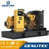 200kVA 160kw/50Hz/Cat Caterpillar Generador Diesel de uso de la tierra