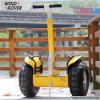 Fabrik-Preis-preiswerter elektrischer Roller-elektrisches Motorrad