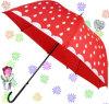 Forma Umbrella, Straight Umbrella, Auto Rain e Sun Umbrella