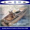Barco do cruzador de cabine de Bestyear Rib42