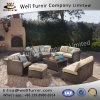 Disposizione dei posti a sedere profonda buona del vimine 9PC di Furnir Wf-17079