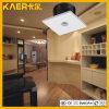 3W天井の穂軸のDownlight LEDのスポットライト