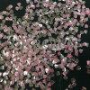 A cor de cristal do Glitter do diamante da cor-de-rosa de Rosa lasc cintilando