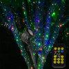 Éclairage vert clair et bleu de Noël de laser de luciole de couleur d'horizontal
