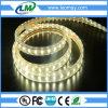 La UL certificó la tira del alto voltaje SMD5050 LED de los 7W/M